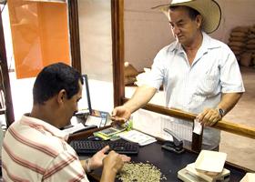 ▲写真はコロンビアのコーヒー売買所。欠点豆の割合や豆のサイズで、買い取り価格が決まる